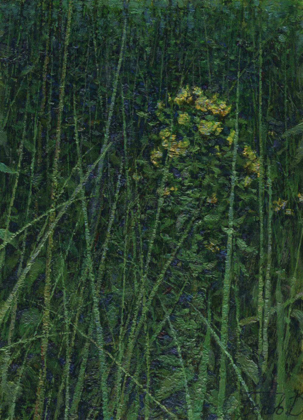 Evening grasses landscape oil painting by Daniil Belov