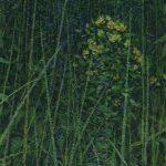 Вечерние травы пейзаж Даниила Белова