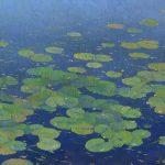 Water lilies painting by Daniil Belov